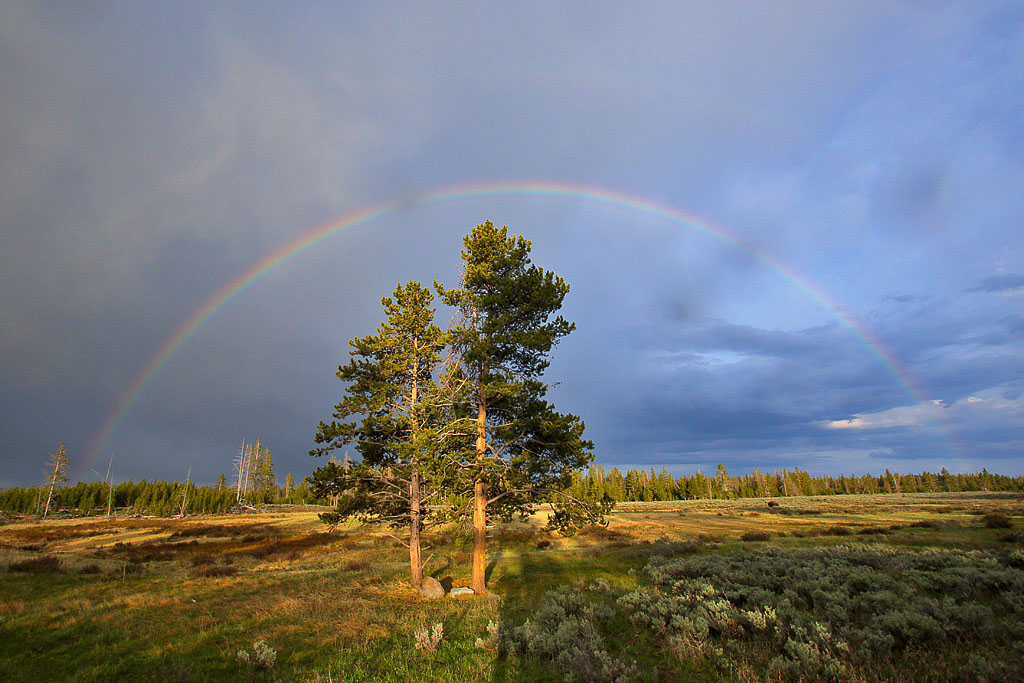 Rainbow over Swan Lake Flats